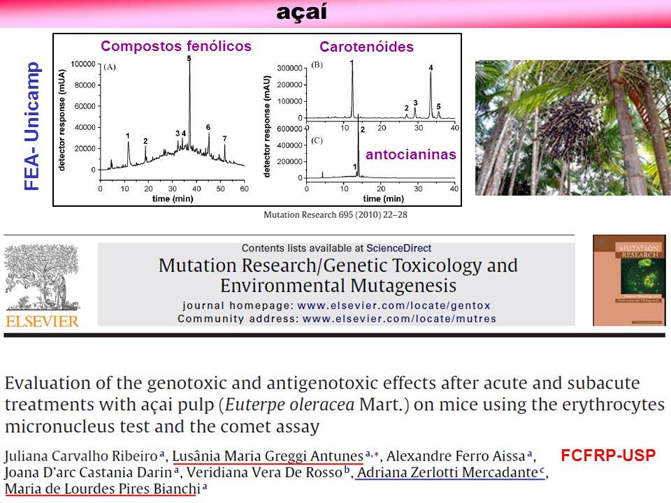 açaí FCFRP-USP Compostos fenólicos Carotenóides antocianinas FEA- Unicamp