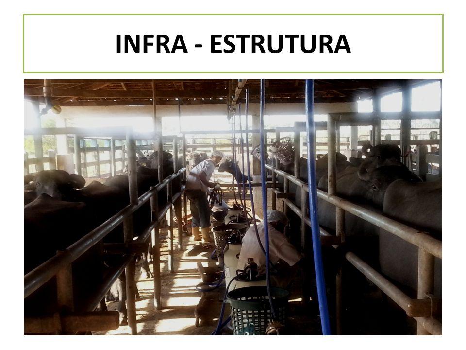 INFRA - ESTRUTURA