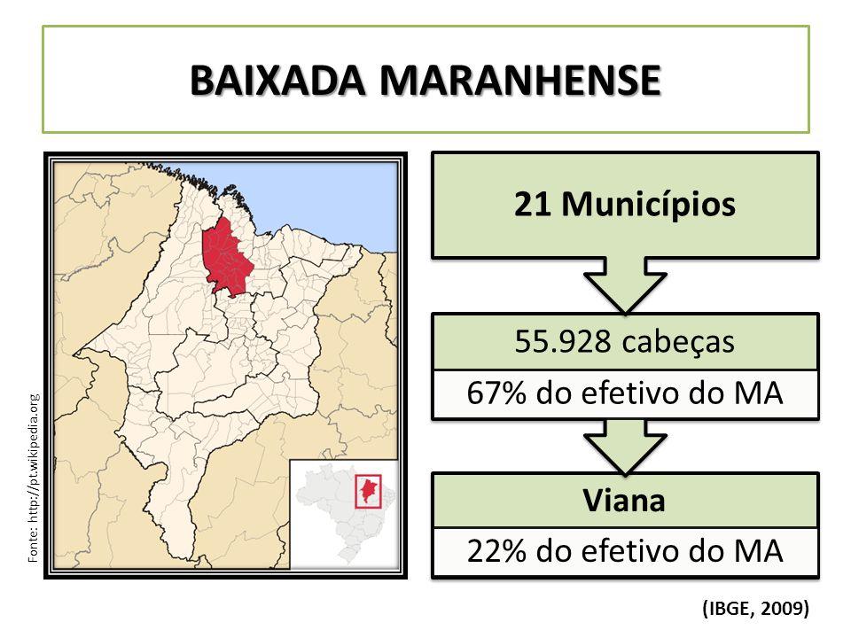 BAIXADA MARANHENSE Fonte: http://pt.wikipedia.org Viana 22% do efetivo do MA 55.928 cabeças 67% do efetivo do MA 21 Municípios (IBGE, 2009)