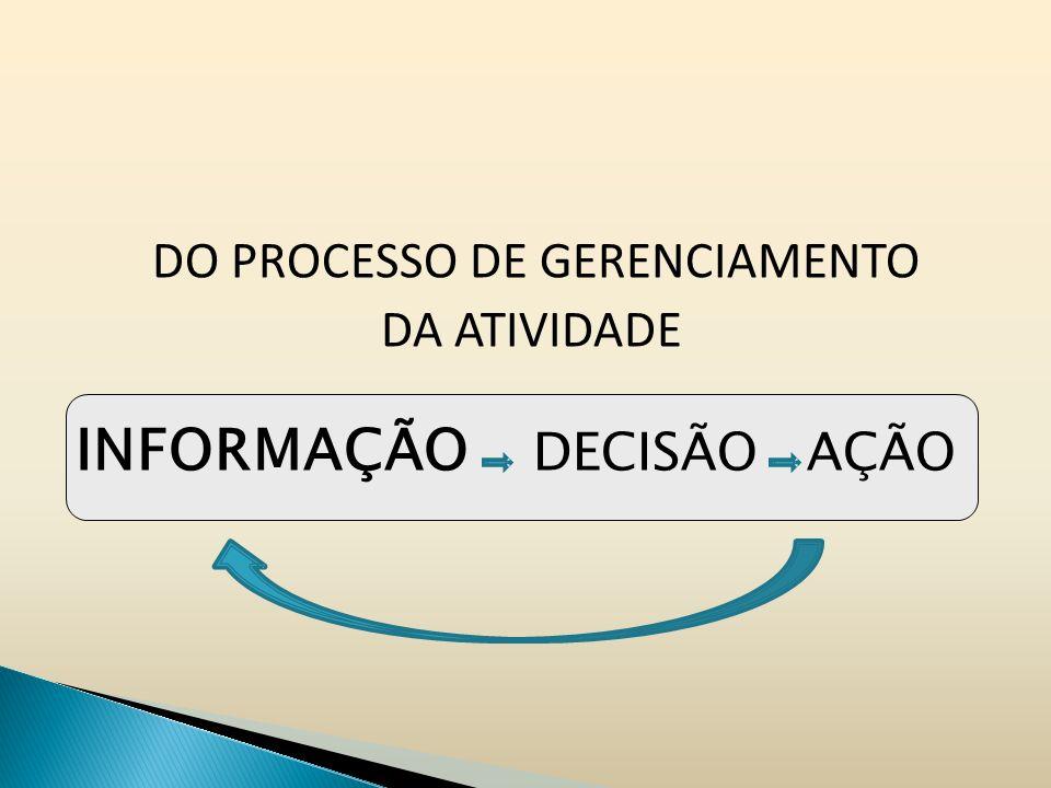 DO PROCESSO DE GERENCIAMENTO DA ATIVIDADE INFORMAÇÃO DECISÃO AÇÃO