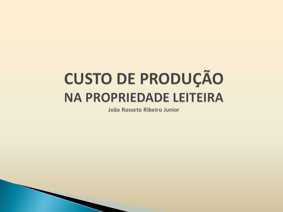 CUSTO DE PRODUÇÃO NA PROPRIEDADE LEITEIRA João Rosseto Ribeiro Junior