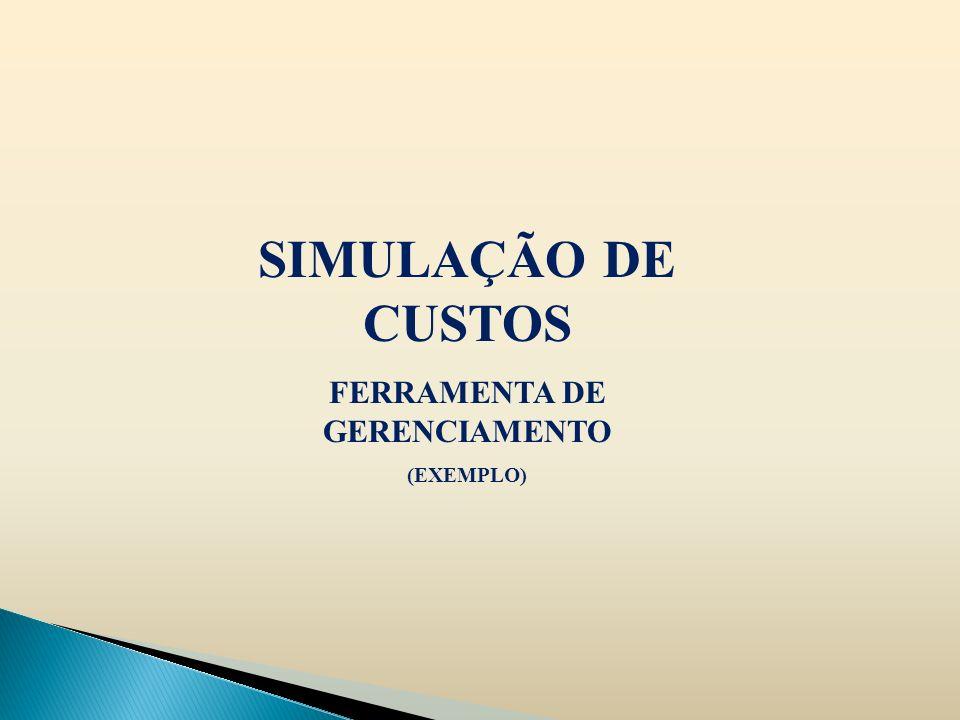 SIMULAÇÃO DE CUSTOS FERRAMENTA DE GERENCIAMENTO (EXEMPLO)