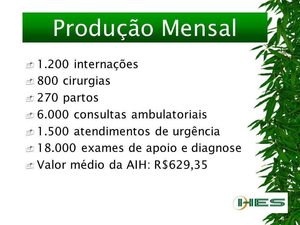 Produção Mensal 1.200 internações 800 cirurgias 270 partos 6.000 consultas ambulatoriais 1.500 atendimentos de urgência 18.000 exames de apoio e diagnose Valor médio da AIH: R$629,35