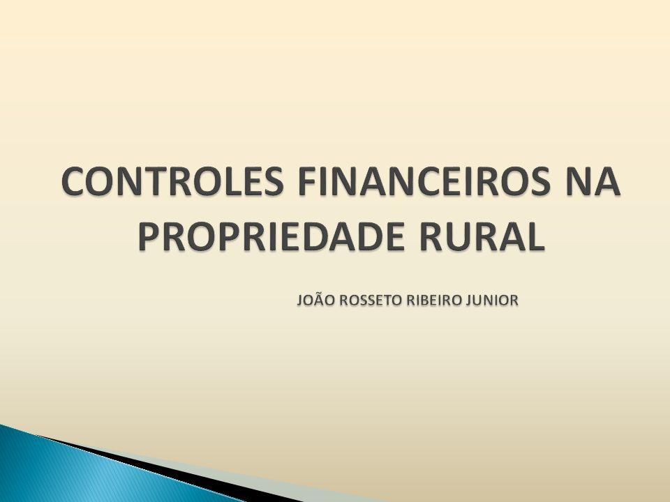 CONTROLES FINANCEIROS NA PROPRIEDADE RURAL JOÃO ROSSETO RIBEIRO JUNIOR