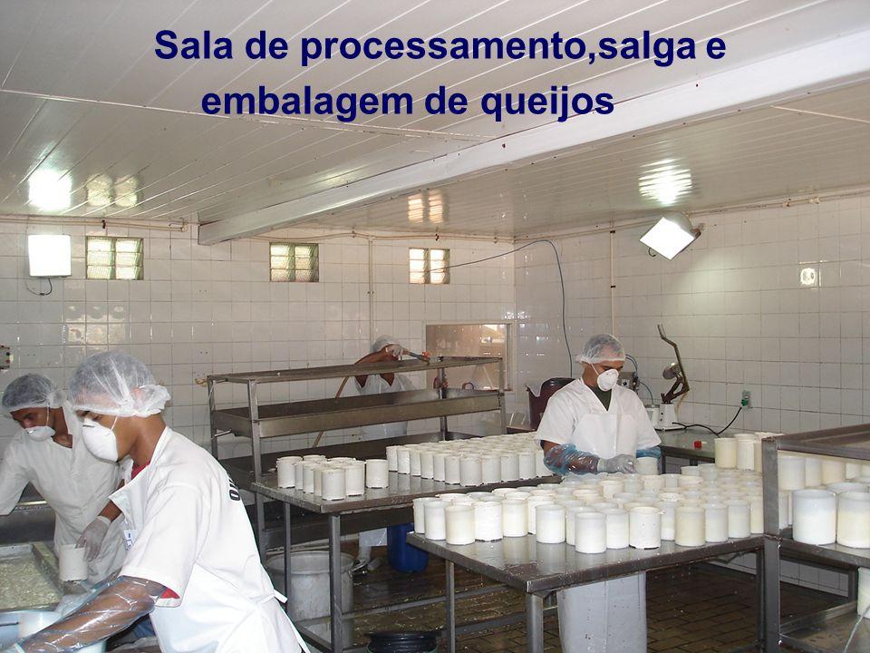 Sala de processamento,salga e embalagem de queijos