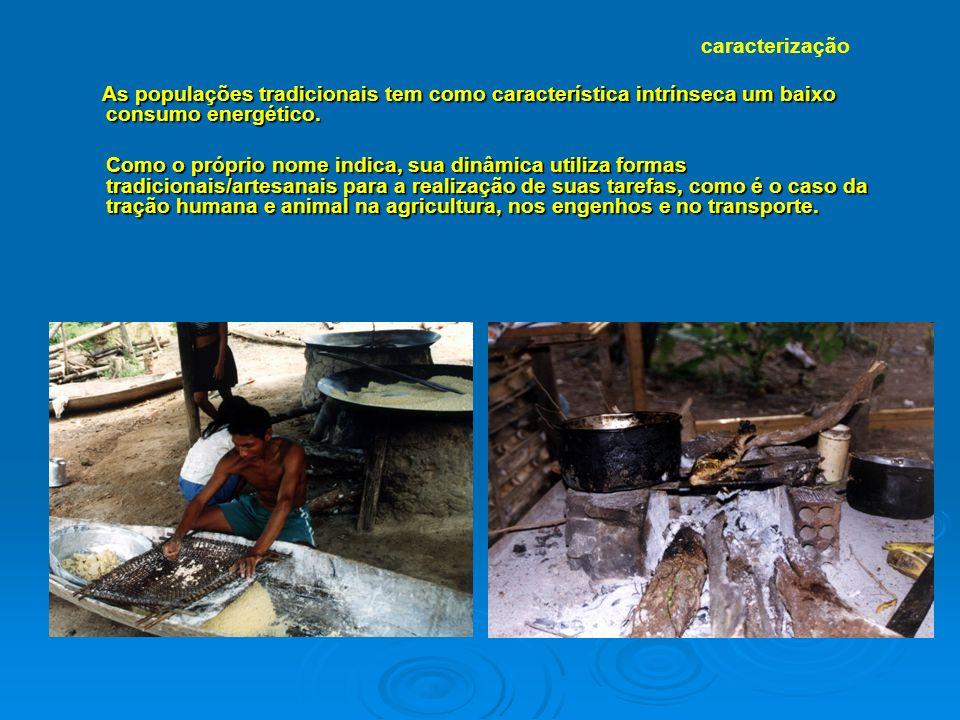 As populações tradicionais tem como característica intrínseca um baixo consumo energético.
