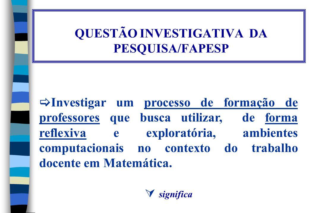 Profª Dra. Rosana Giaretta Sguerra Miskulin LAPEMMEC/CEMPEM/FE – UNICAMP E-mail: misk@unicamp.br http://www.fae.unicamp.br/cempem/lapemmec Ambientes C