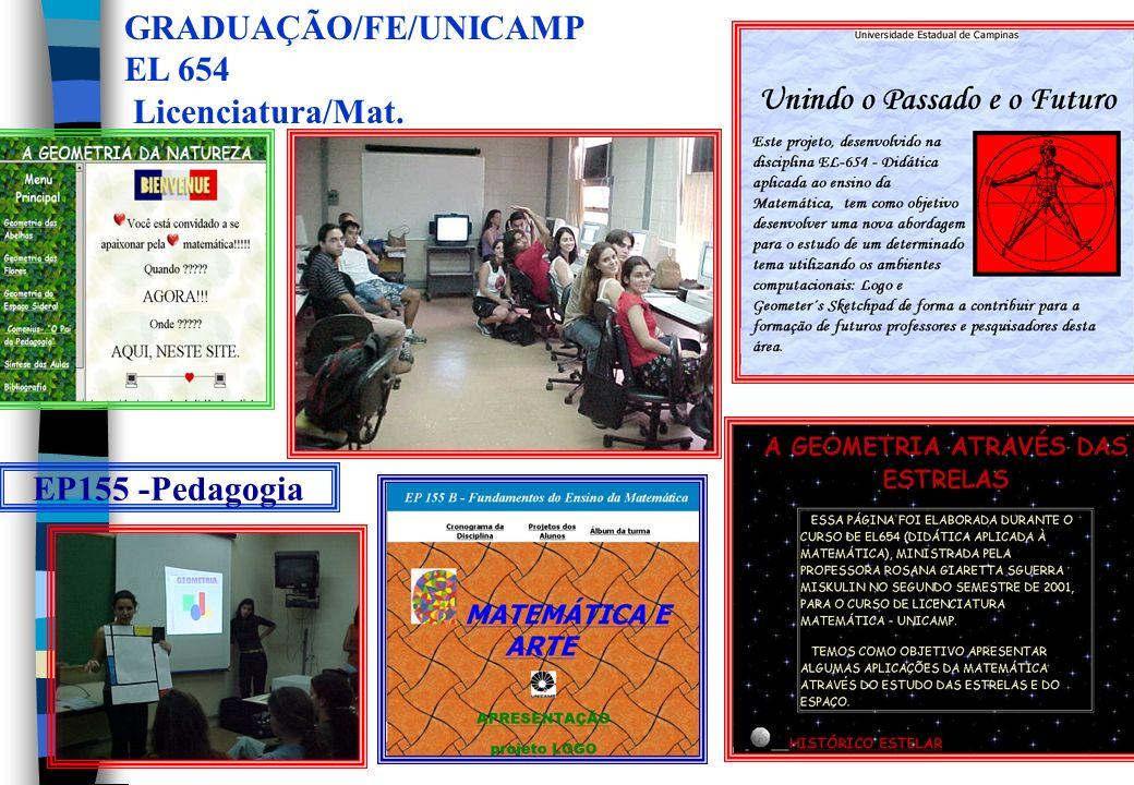 Implementação da pesquisa com profs. Utilização do ambiente A Cultura Profissional no Contexto da Educação a Distância Profª Rosana G.S. Miskulin Prof