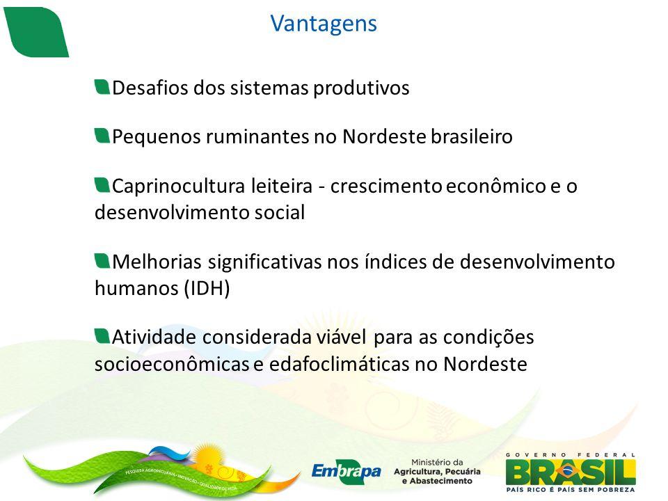 Vantagens Desafios dos sistemas produtivos Pequenos ruminantes no Nordeste brasileiro Caprinocultura leiteira - crescimento econômico e o desenvolvimento social Melhorias significativas nos índices de desenvolvimento humanos (IDH) Atividade considerada viável para as condições socioeconômicas e edafoclimáticas no Nordeste