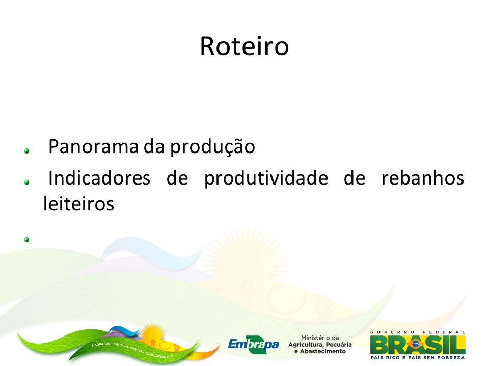Roteiro Panorama da produção Indicadores de produtividade de rebanhos leiteiros