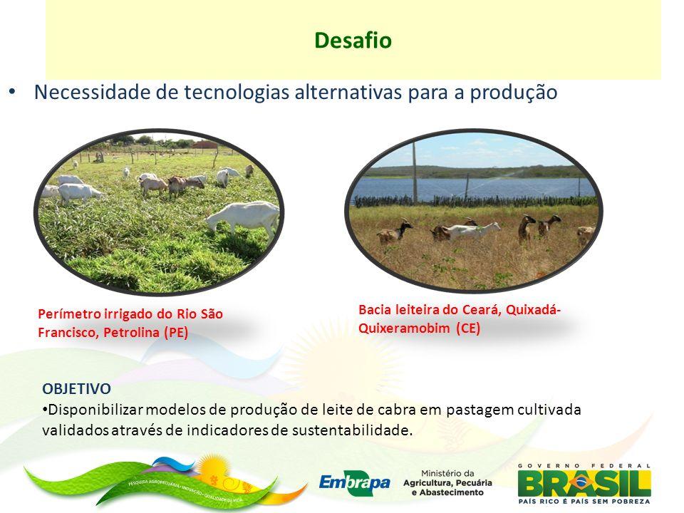 Necessidade de tecnologias alternativas para a produção Desafio Perímetro irrigado do Rio São Francisco, Petrolina (PE) OBJETIVO Disponibilizar modelos de produção de leite de cabra em pastagem cultivada validados através de indicadores de sustentabilidade.