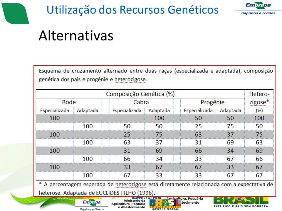 Alternativas – Cruzamentos alternados Utilização dos Recursos Genéticos