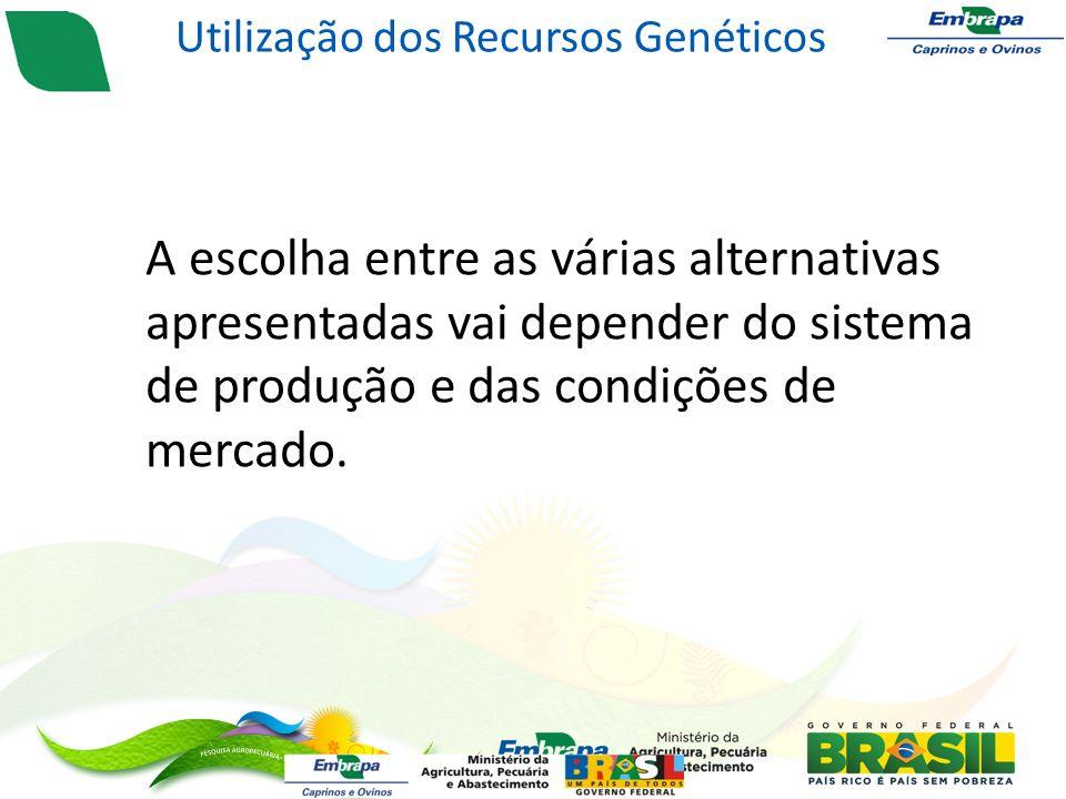 A escolha entre as várias alternativas apresentadas vai depender do sistema de produção e das condições de mercado.