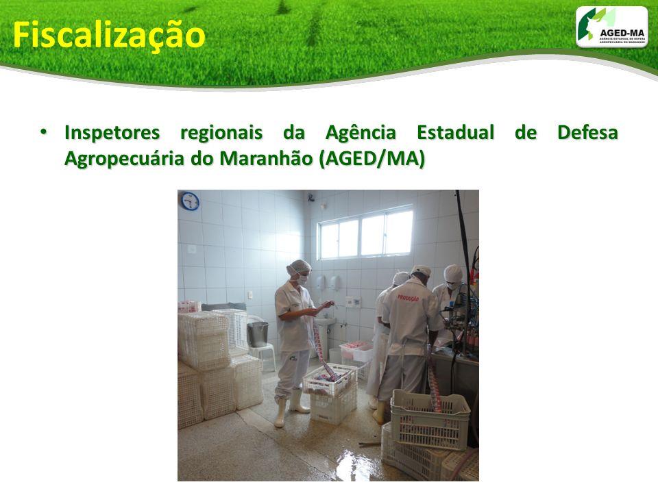 Fiscalização Inspetores regionais da Agência Estadual de Defesa Agropecuária do Maranhão (AGED/MA) Inspetores regionais da Agência Estadual de Defesa