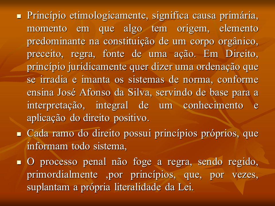 Na constituição Federal encontramos a maioria dos princípios que governam o processo penal brasileiro.