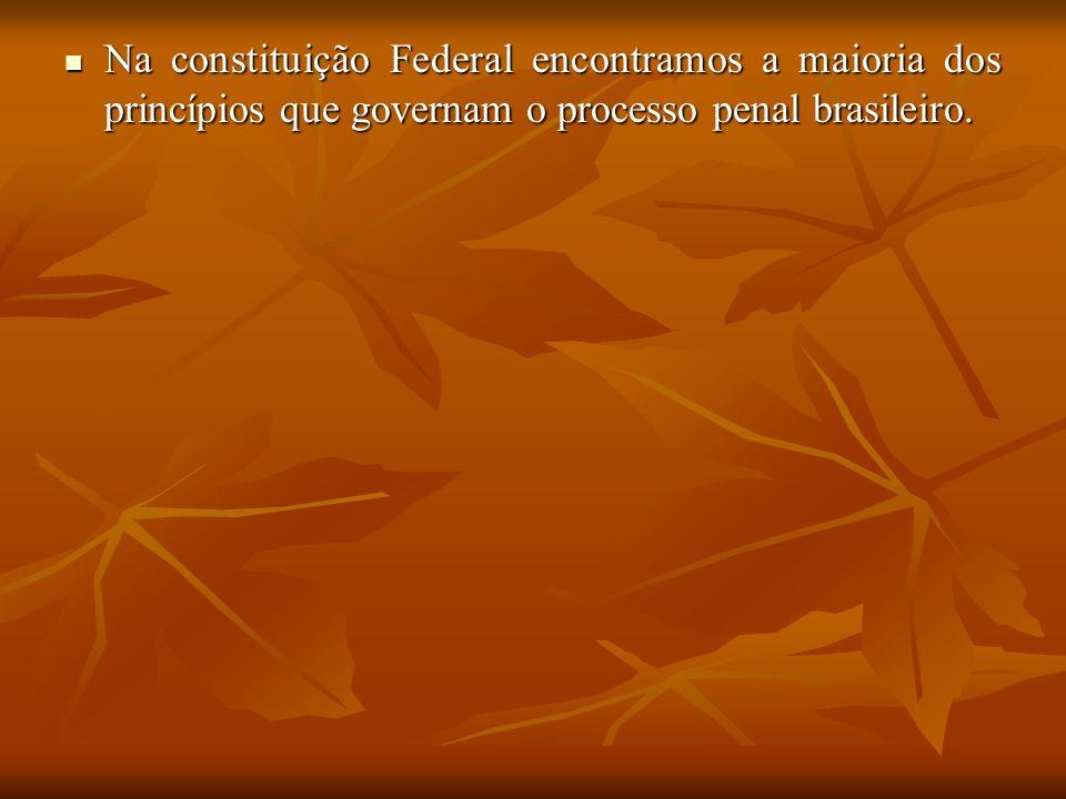 Na constituição Federal encontramos a maioria dos princípios que governam o processo penal brasileiro. Na constituição Federal encontramos a maioria d