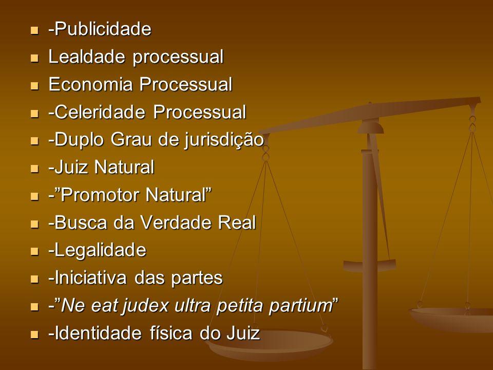 -Publicidade -Publicidade Lealdade processual Lealdade processual Economia Processual Economia Processual -Celeridade Processual -Celeridade Processua