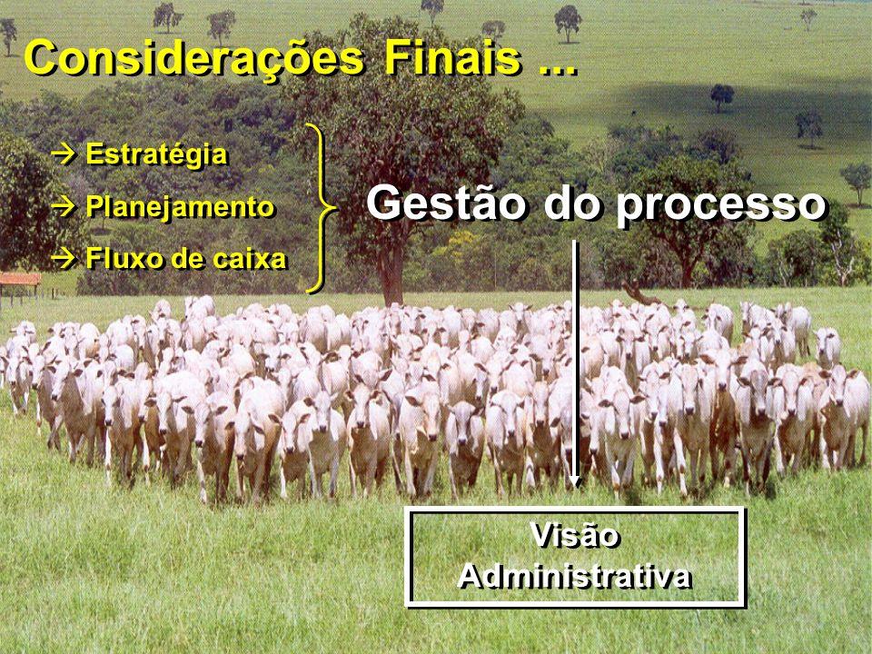 Considerações Finais... Estratégia Planejamento Fluxo de caixa Estratégia Planejamento Fluxo de caixa Gestão do processo Visão Administrativa