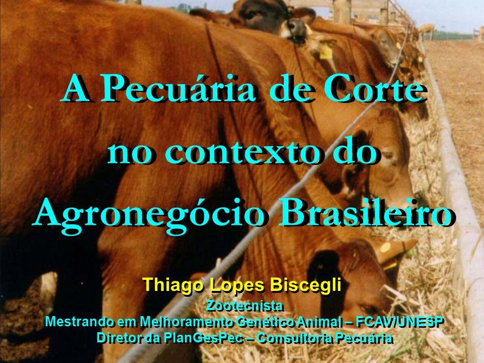 Brasil Pecuário Rebanho: 170 milhões de cabeças Produção de bovinos em pastagens Baixa taxa de lotação : 0,6 U.A / ha Taxa de desfrute: 23,4 % Taxa de prenhez: 60 % Estacionalidade : águas / secas Abertura Mercadológica Profissionalização da cadeia produtiva Rebanho: 170 milhões de cabeças Produção de bovinos em pastagens Baixa taxa de lotação : 0,6 U.A / ha Taxa de desfrute: 23,4 % Taxa de prenhez: 60 % Estacionalidade : águas / secas Abertura Mercadológica Profissionalização da cadeia produtiva