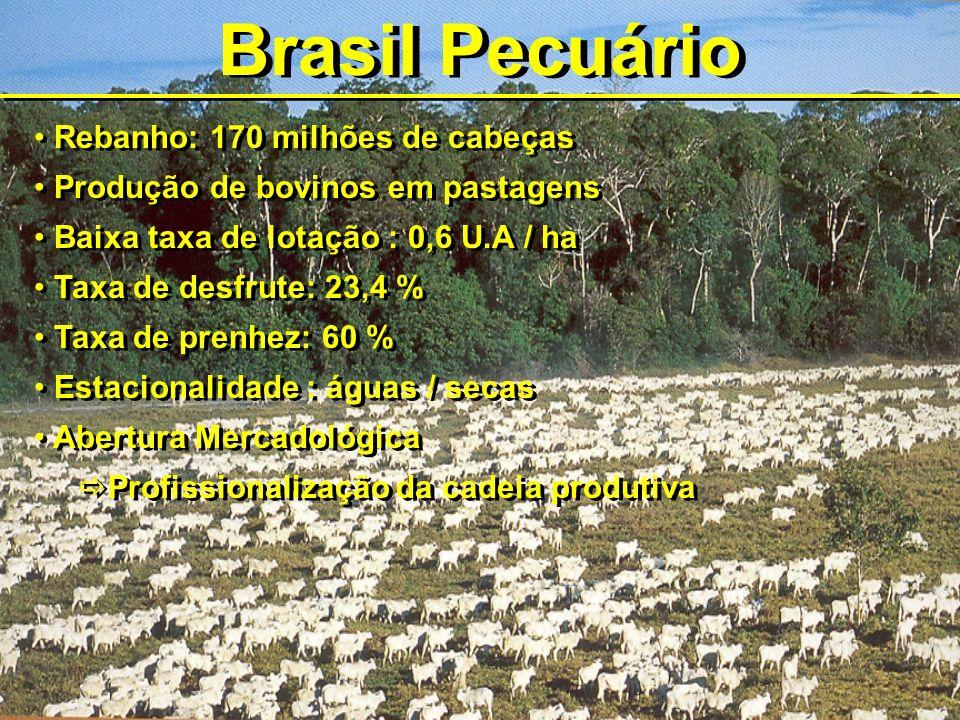 Brasil Pecuário Rebanho: 170 milhões de cabeças Produção de bovinos em pastagens Baixa taxa de lotação : 0,6 U.A / ha Taxa de desfrute: 23,4 % Taxa de