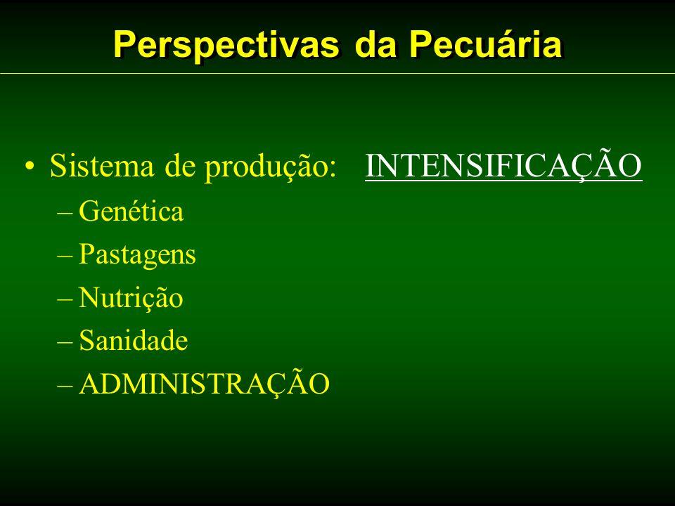 Perspectivas da Pecuária Sistema de produção: INTENSIFICAÇÃO –Genética –Pastagens –Nutrição –Sanidade –ADMINISTRAÇÃO