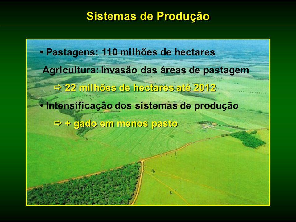 Sistemas de Produção Pastagens: 110 milhões de hectares Agricultura: Invasão das áreas de pastagem 22 milhões de hectares até 2012 22 milhões de hecta