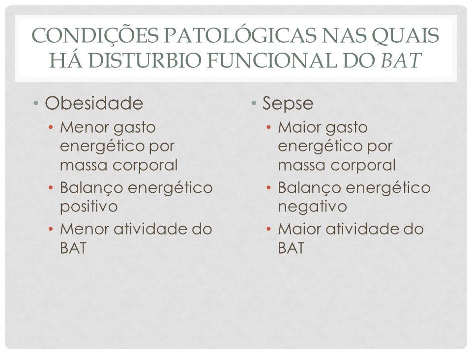 INDUÇÃO DE FENÓTIPO SEPSE-LIKE Arruda et al Endocrinology 2010
