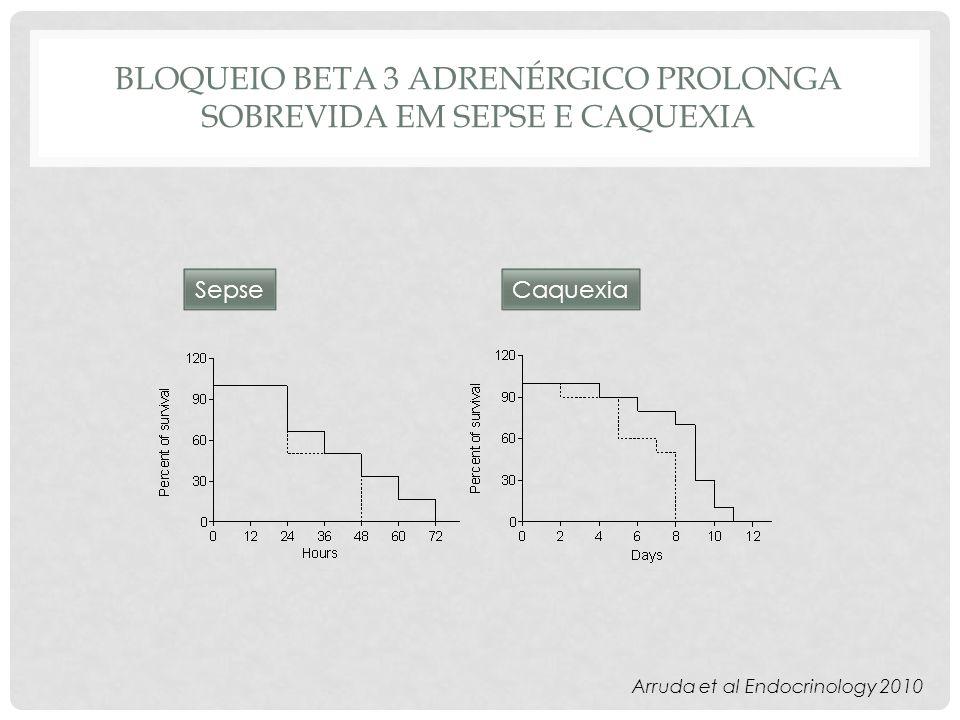BLOQUEIO BETA 3 ADRENÉRGICO PROLONGA SOBREVIDA EM SEPSE E CAQUEXIA SepseCaquexia Arruda et al Endocrinology 2010