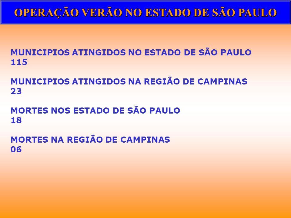 OPERAÇÃO VERÃO NO ESTADO DE SÃO PAULO MUNICIPIOS ATINGIDOS NO ESTADO DE SÃO PAULO 115 MUNICIPIOS ATINGIDOS NA REGIÃO DE CAMPINAS 23 MORTES NOS ESTADO