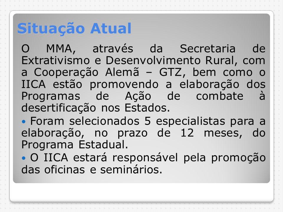 Situação Atual O MMA, através da Secretaria de Extrativismo e Desenvolvimento Rural, com a Cooperação Alemã – GTZ, bem como o IICA estão promovendo a