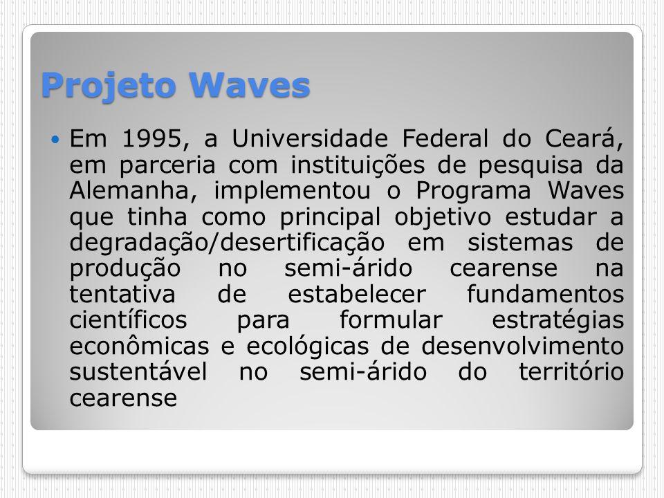 Projeto Waves Em 1995, a Universidade Federal do Ceará, em parceria com instituições de pesquisa da Alemanha, implementou o Programa Waves que tinha c