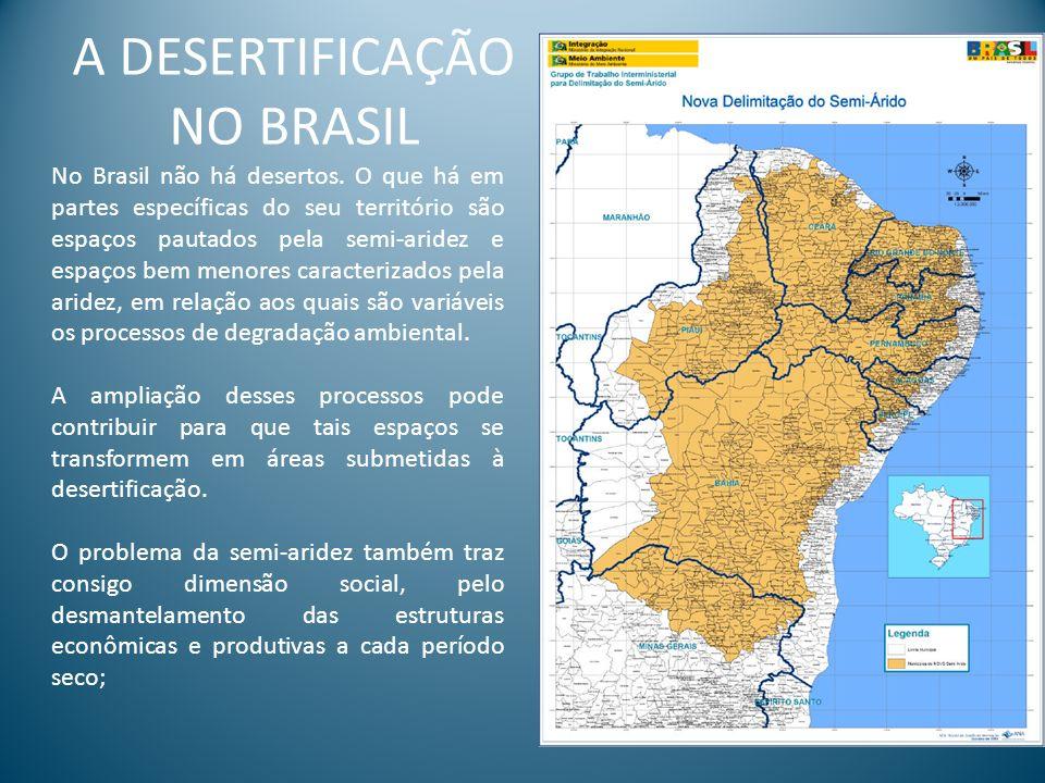 A DESERTIFICAÇÃO NO BRASIL No Brasil não há desertos. O que há em partes específicas do seu território são espaços pautados pela semi-aridez e espaços