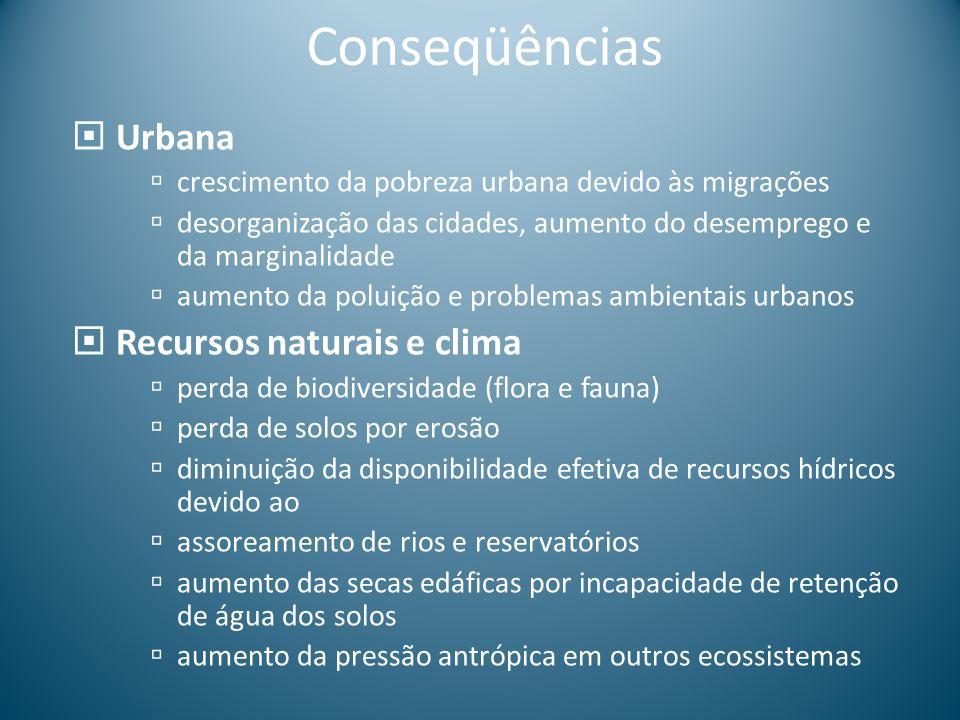 Conseqüências Urbana crescimento da pobreza urbana devido às migrações desorganização das cidades, aumento do desemprego e da marginalidade aumento da