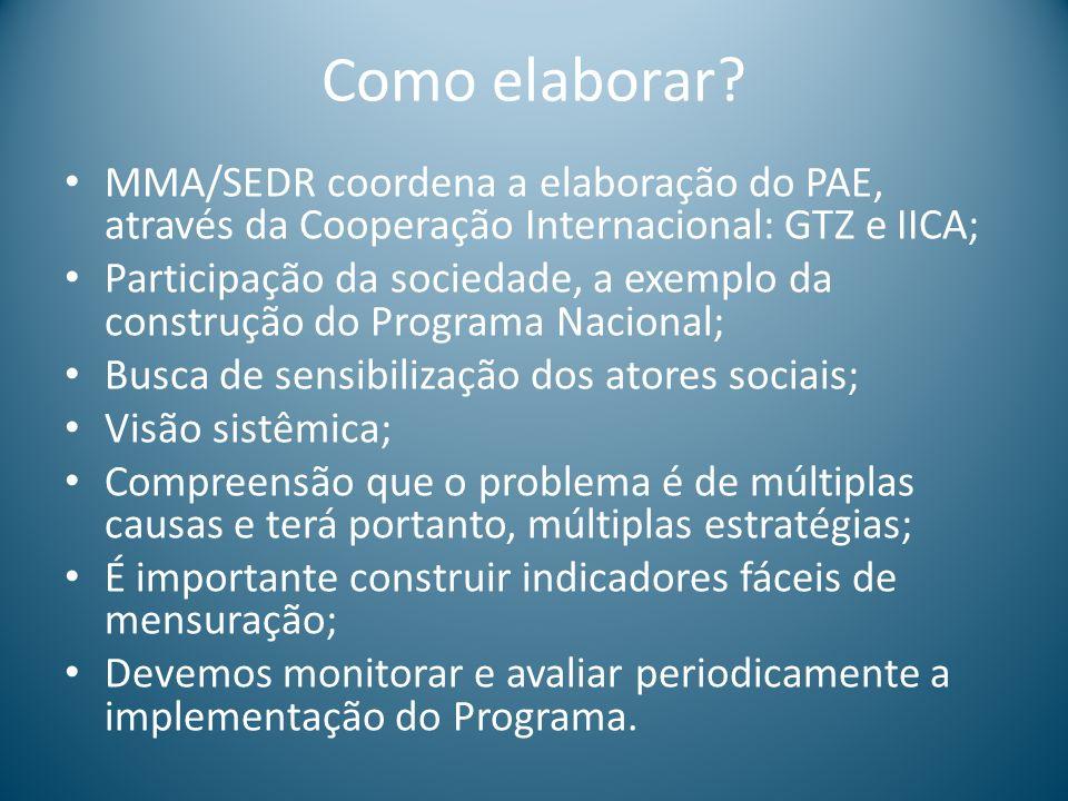 Como elaborar? MMA/SEDR coordena a elaboração do PAE, através da Cooperação Internacional: GTZ e IICA; Participação da sociedade, a exemplo da constru