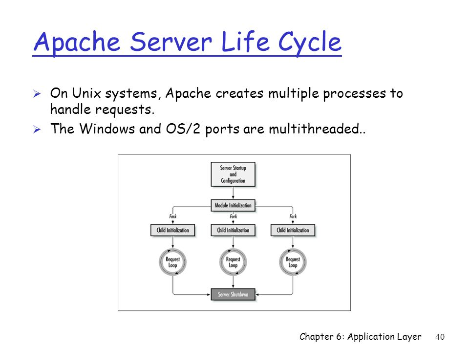 40 Apache Server Life Cycle Ø On Unix systems, Apache creates multiple processes to handle requests. Ø The Windows and OS/2 ports are multithreaded..