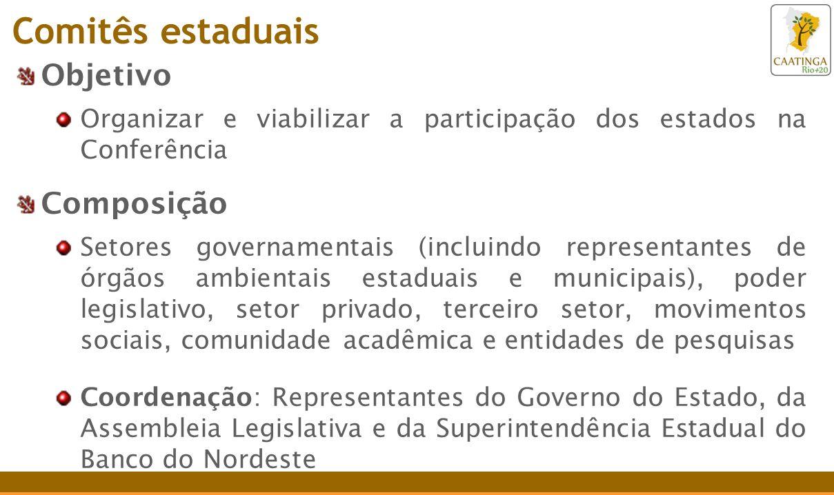 Objetivo Organizar e viabilizar a participação dos estados na Conferência Composição Setores governamentais (incluindo representantes de órgãos ambien