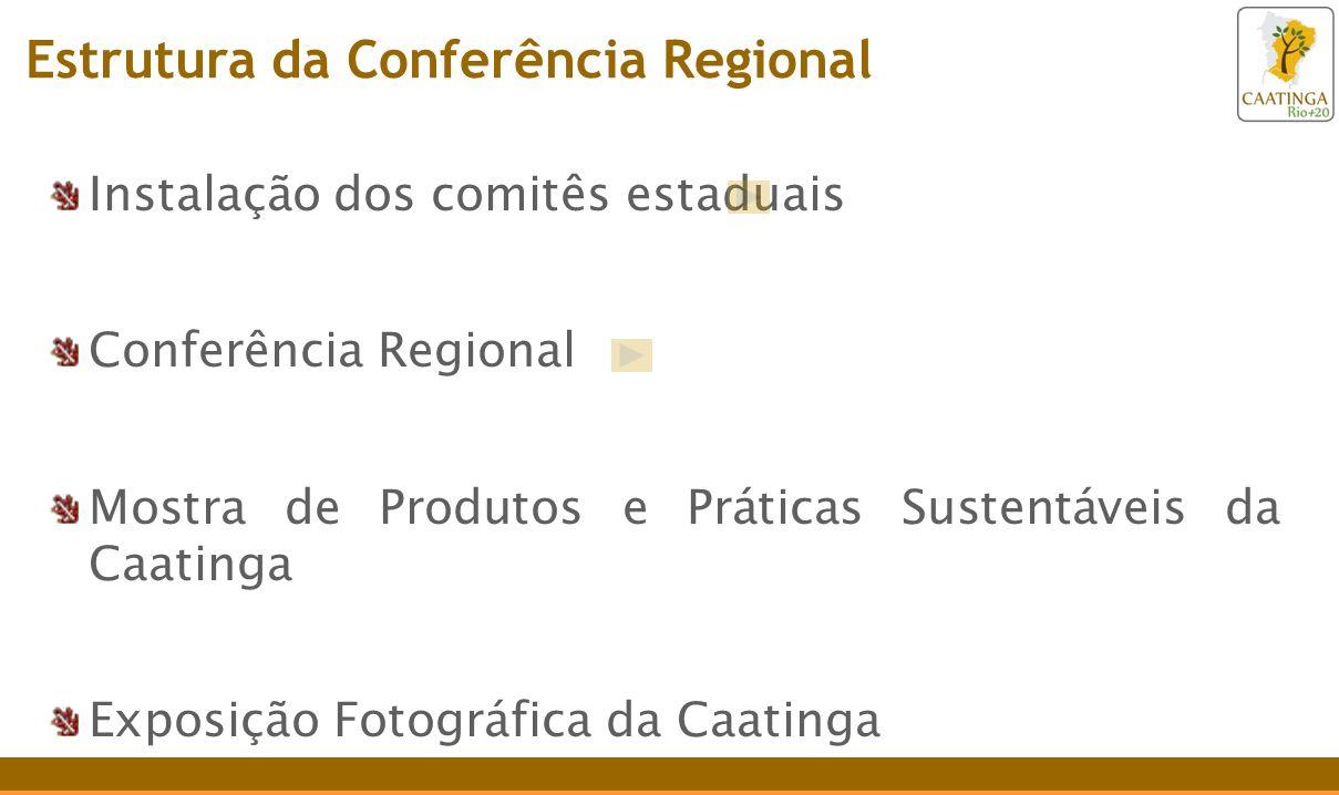 Instalação dos comitês estaduais Conferência Regional Mostra de Produtos e Práticas Sustentáveis da Caatinga Exposição Fotográfica da Caatinga Estrutura da Conferência Regional