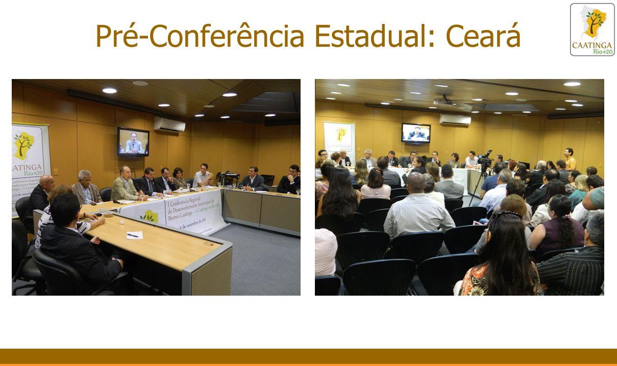 Pré-Conferência Estadual: Ceará