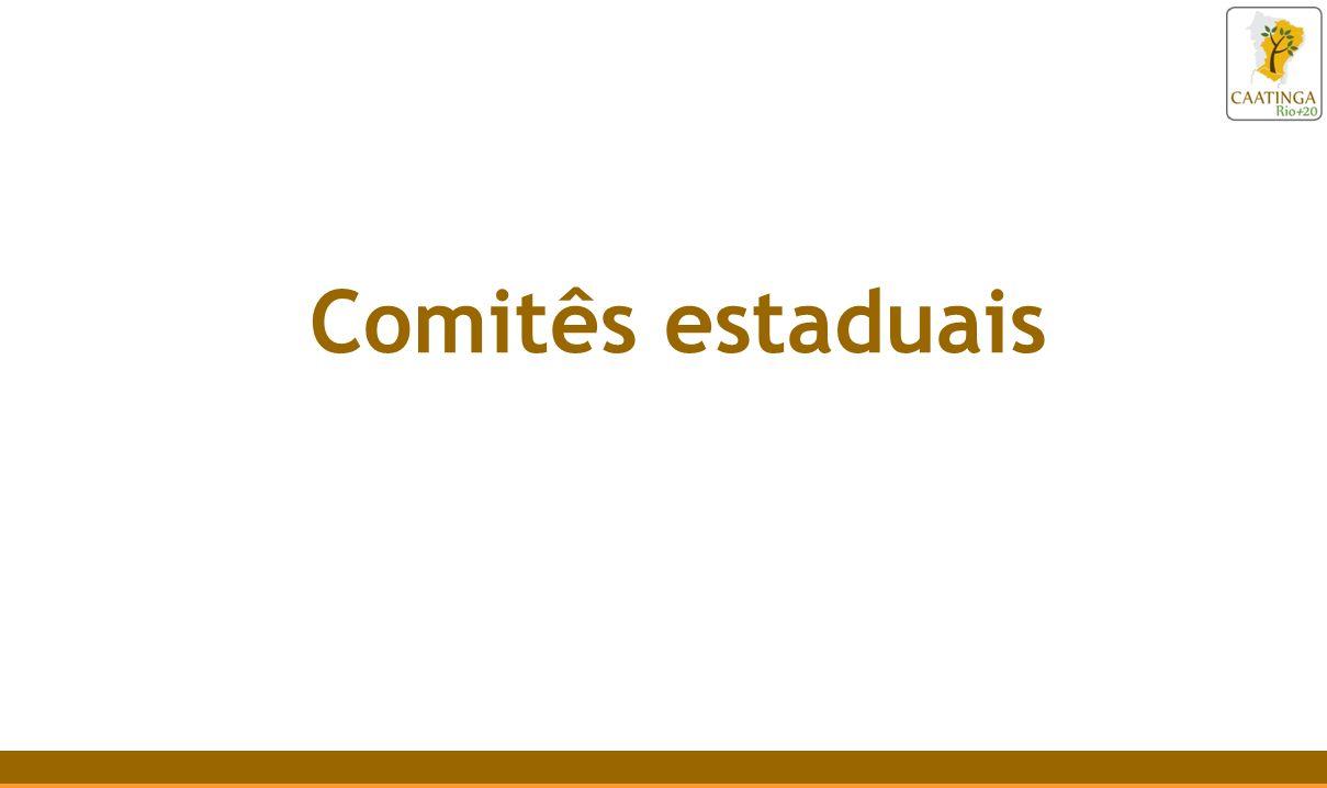 Comitês estaduais