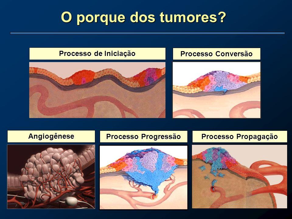 O porque dos tumores? Angiogênese Processo Progressão Processo Propagação Processo de Iniciação Processo Conversão