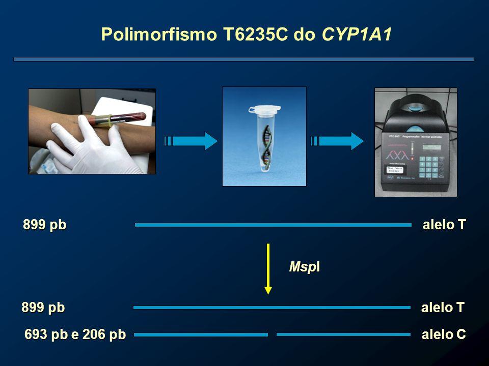 Polimorfismo T6235C do CYP1A1 899 pb alelo T 693 pb e 206 pb alelo C 899 pb alelo T MspI