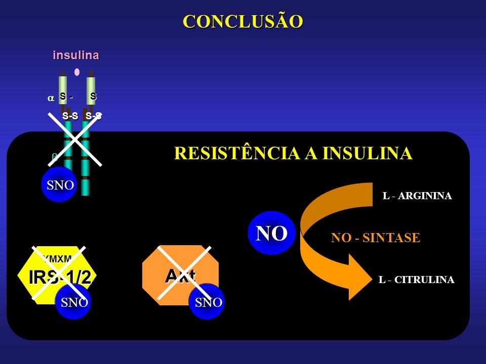 CONCLUSÃO IRS-1/2 YMXM S-SS-S S - S insulina NO L - ARGININA L - CITRULINA NO - SINTASE SNO RESISTÊNCIA A INSULINA Akt SNO