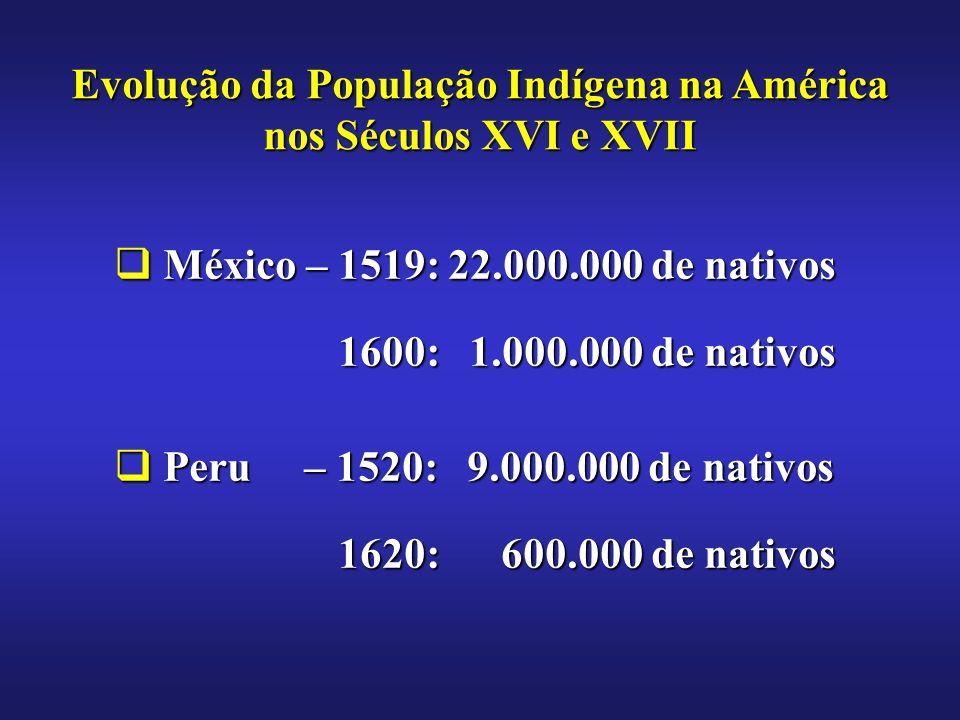 México – 1519: 22.000.000 de nativos México – 1519: 22.000.000 de nativos 1600: 1.000.000 de nativos 1600: 1.000.000 de nativos Peru – 1520: 9.000.000 de nativos Peru – 1520: 9.000.000 de nativos 1620: 600.000 de nativos 1620: 600.000 de nativos Evolução da População Indígena na América nos Séculos XVI e XVII