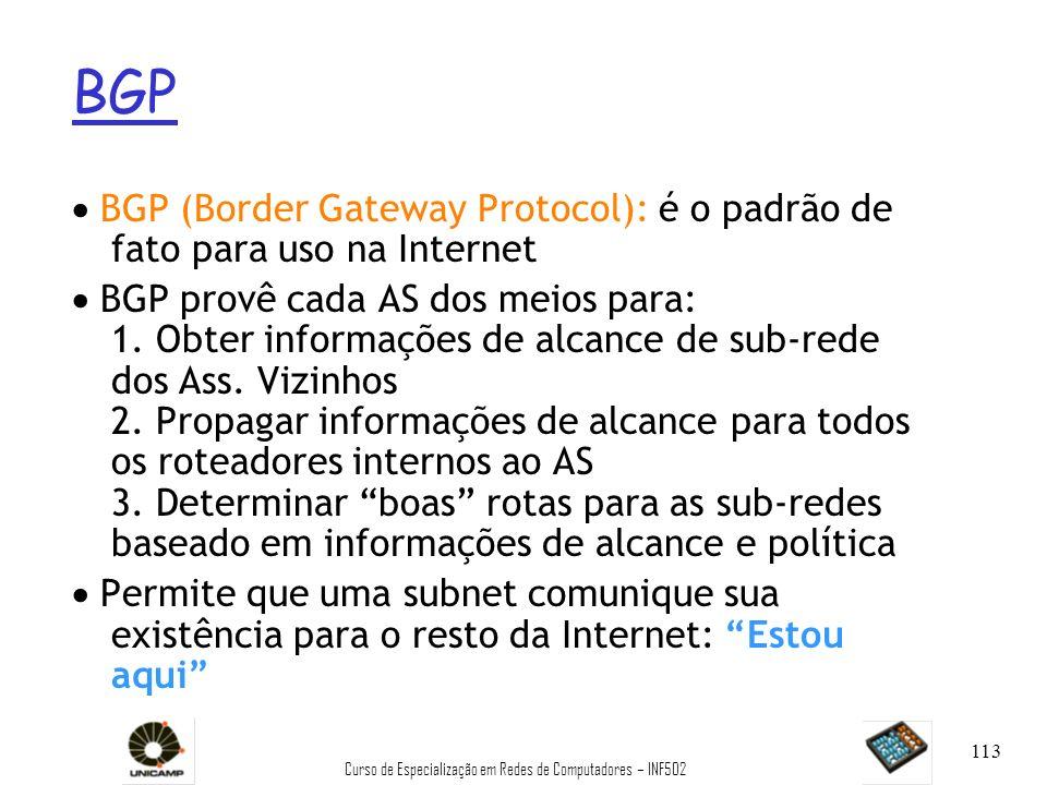 Curso de Especialização em Redes de Computadores – INF502 113 BGP BGP (Border Gateway Protocol): é o padrão de fato para uso na Internet BGP provê cad