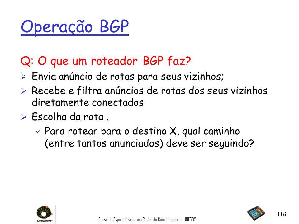 Curso de Especialização em Redes de Computadores – INF502 116 Operação BGP Q: O que um roteador BGP faz? Ø Envia anúncio de rotas para seus vizinhos;