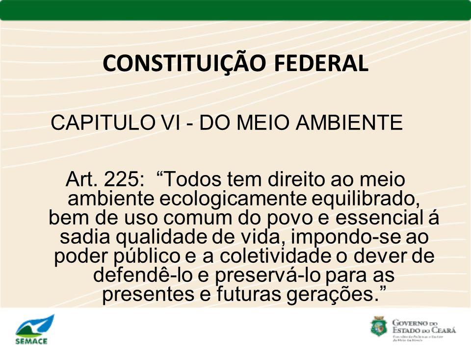 CONSTITUIÇÃO FEDERAL CAPITULO VI - DO MEIO AMBIENTE Art. 225: Todos tem direito ao meio ambiente ecologicamente equilibrado, bem de uso comum do povo