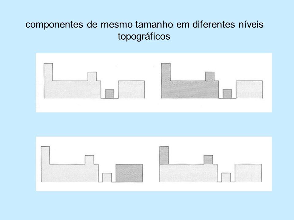 componentes de mesmo tamanho em diferentes níveis topográficos