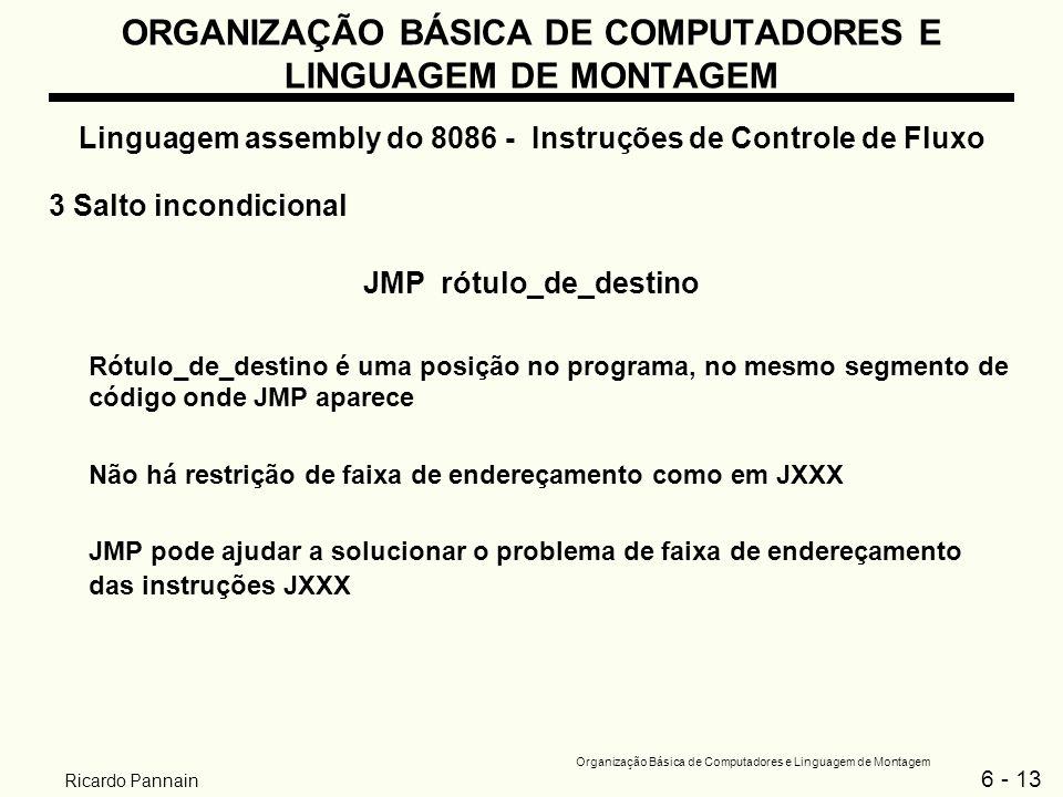 6 - 13 Organização Básica de Computadores e Linguagem de Montagem Ricardo Pannain ORGANIZAÇÃO BÁSICA DE COMPUTADORES E LINGUAGEM DE MONTAGEM Linguagem