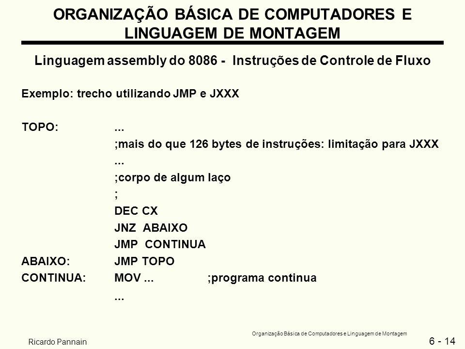 6 - 14 Organização Básica de Computadores e Linguagem de Montagem Ricardo Pannain ORGANIZAÇÃO BÁSICA DE COMPUTADORES E LINGUAGEM DE MONTAGEM Linguagem