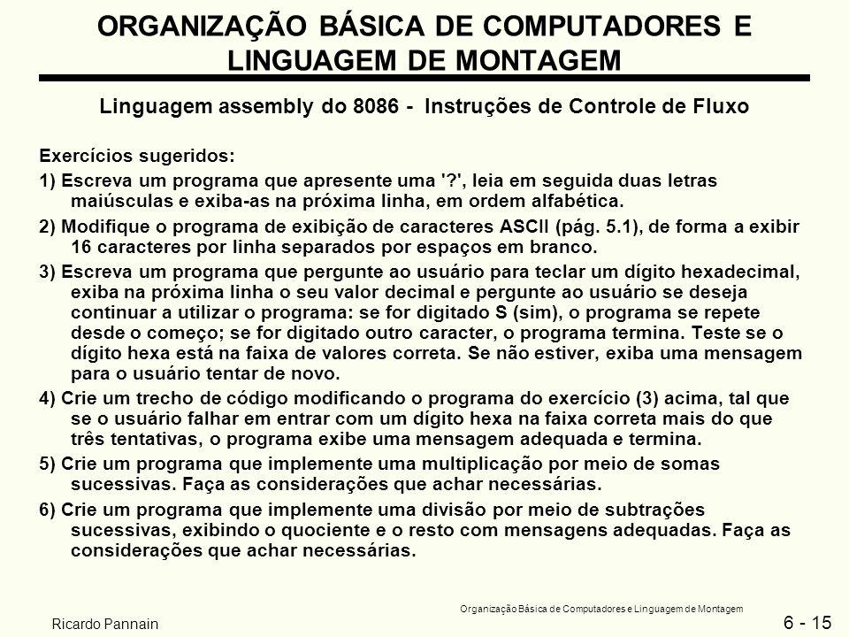 6 - 15 Organização Básica de Computadores e Linguagem de Montagem Ricardo Pannain ORGANIZAÇÃO BÁSICA DE COMPUTADORES E LINGUAGEM DE MONTAGEM Linguagem
